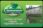 Cameron Organic