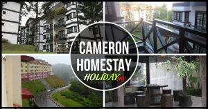 Cameron Homestay