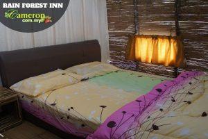 Rain-Forest-Inn