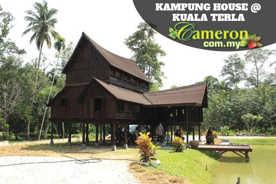 Kampung House @ Kuala Terla