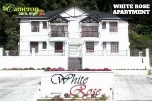 WHITE-ROSE-APARTMENT