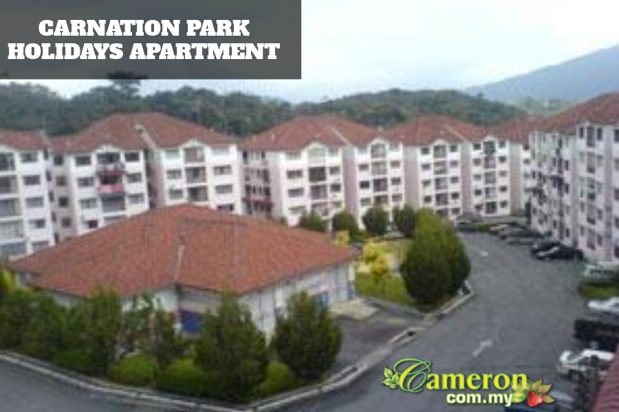 CARNATION-PARK-HOLIDAYS-APARTMENT