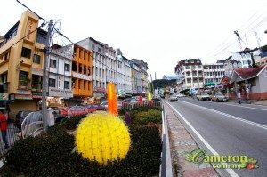 Brinchang Cameron Highlands