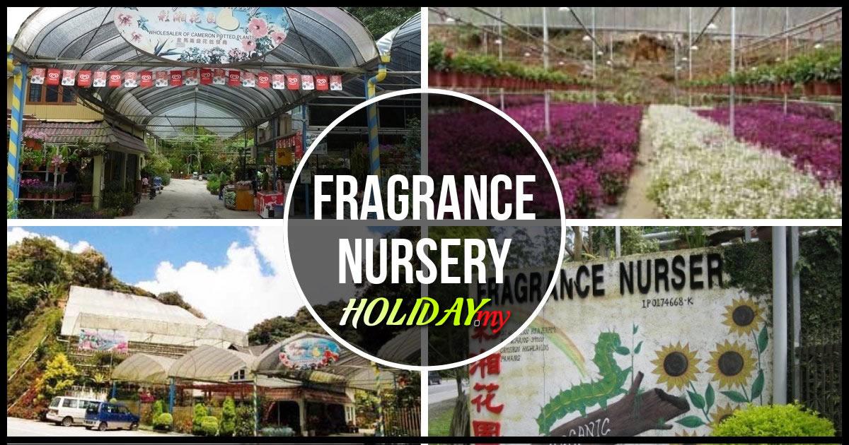 Fragrance Nursery