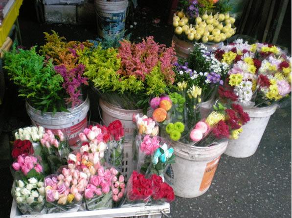 florists-cameron-highlands