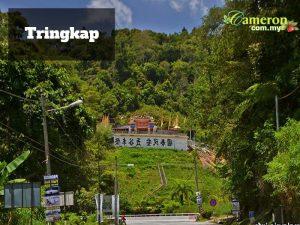 TRINGKAP-CAMERON-HIGHLANDS