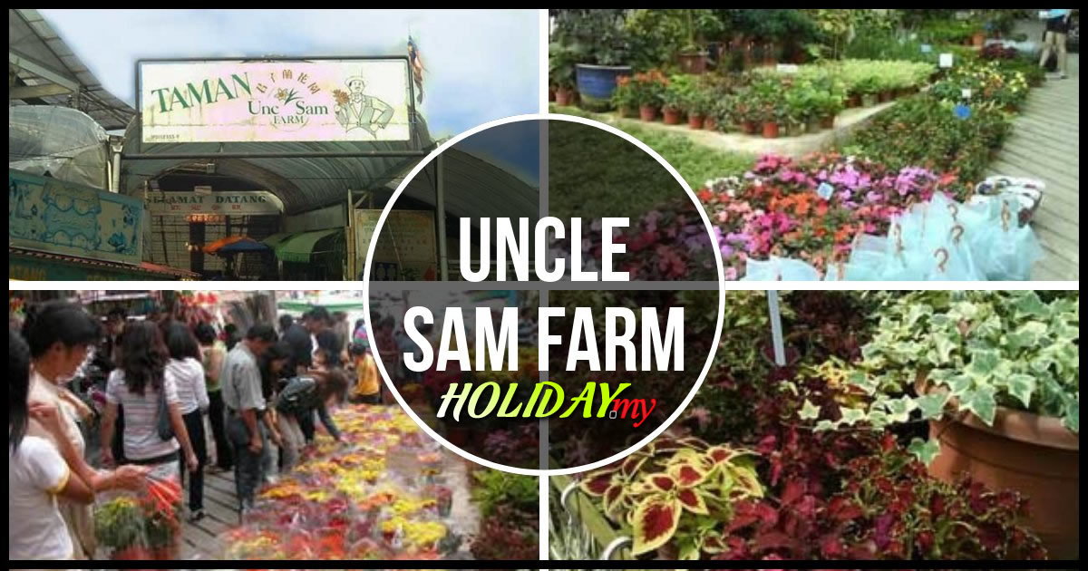 Uncle Sam Farm