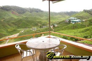 bharat_tea_cameron_highlands