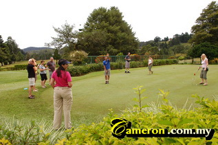 golf course cameron highlands