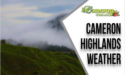 Cameron Highlands Weather
