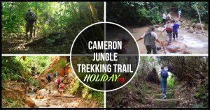 Cameron Jungle Trekking Trail