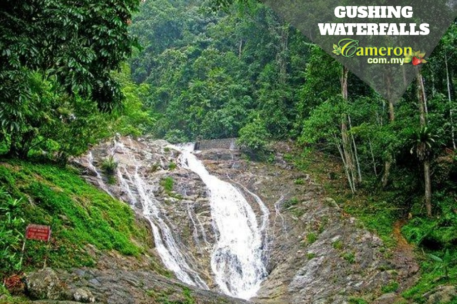 Gushing waterfalls