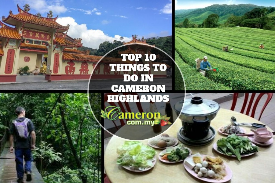 Top 10 things to do in Cameron Highlands