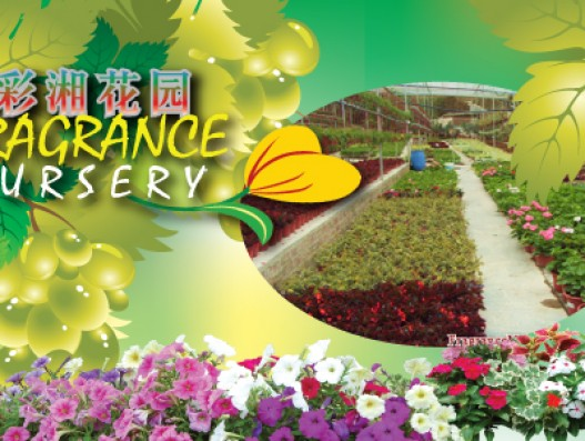 Fragrance Nursery